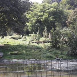 Heimat-Tierpark Olderdissen in Bielefeld
