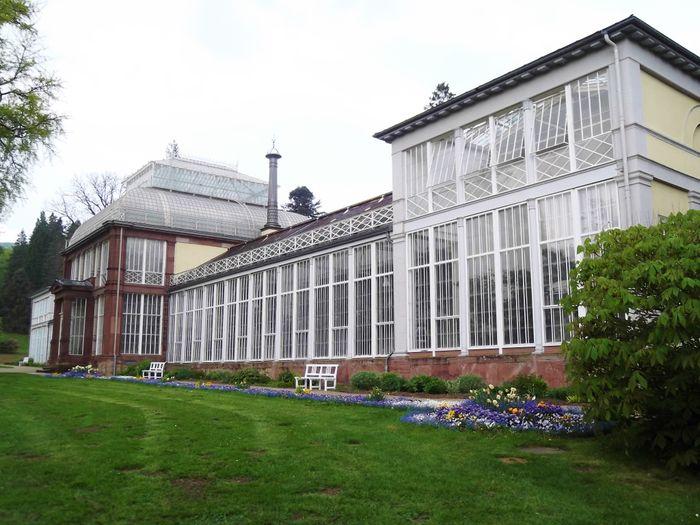 Grosses Gewachshaus Wilhelmshohe Mhk 1 Bewertung Kassel Bad
