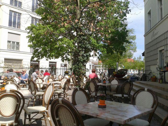 Wiener Restaurant Cafe 7 Bewertungen Potsdam Brandenburger