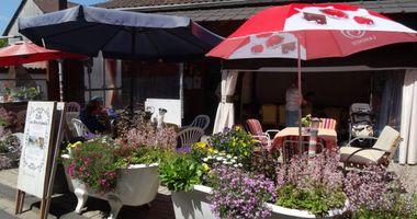 Café zur Alten Schmiede in Niedenstein