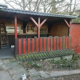 Bild zu Kleingärtnerverein Kiel-Hassee e.V. in Kiel