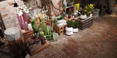 Floristikwerkstatt Hannelore Rachow in Bernau bei Berlin