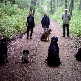 Bild zu Active Dog Hundeschule Löb Wiesbaden - Mainz - Rheingau in Wiesbaden