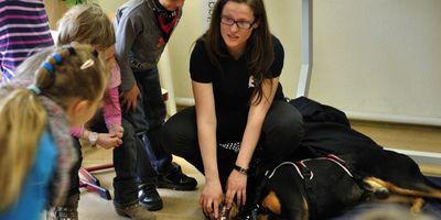 Hundepädagoge - Hundeschule, tiergestützte Pädagogik, Therapiehundeausbilung in Erfurt