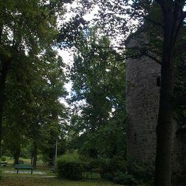 Tourist-Information Stadt Neustadt a.a.Aisch in Neustadt an der Aisch