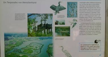 Landesbund für Vogelschutz in Bayern e.V. in Muhr am See