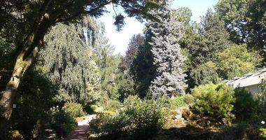 Förderverein Botanischer Erlebnisgarten e.V. in Altenburg in Thüringen
