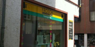 Frosch Haustechnik GmbH & Co.KG in Bingen am Rhein