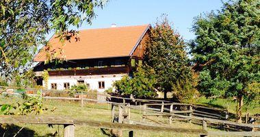 Imkerei Oswald in Pfeffenhausen