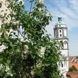 Frauenkirche in Meißen