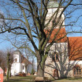 Schlosskirche Altlandsberg in Altlandsberg