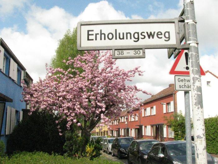 Baugenossenschaft Freie Scholle Zu Berlin Eg 1 Bewertung
