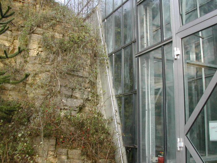 Garten Osnabrück bilder und fotos zu botanischen garten der universität osnabrück in