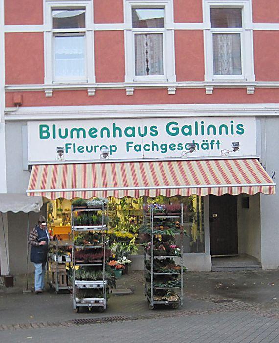 blumenhaus galinnis blumenladen 1 foto bochum. Black Bedroom Furniture Sets. Home Design Ideas