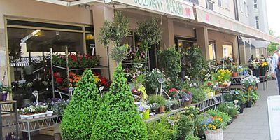 Goldmann & Weigert Blumen GmbH Blumengroßhandel in Starnberg