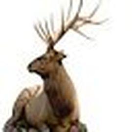 Bild zu Jagdquelle - Jagdausstatter in Treuenbrietzen