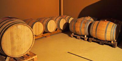 Weingut Renner GbR in Fessenbach Stadt Offenburg