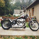 Profilbild von Sabse26012