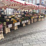 Wochenmarkt Vegesack in Bremen
