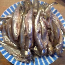 Fisch Büsing in Brake an der Unterweser
