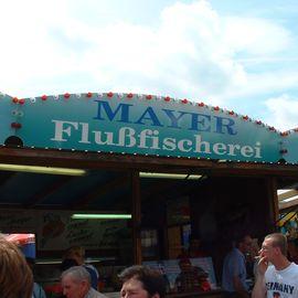 Bild zu Gäubodenvolksfest in Straubing