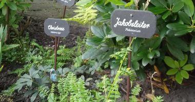 Kögel-Willms Stiftung in Rastede