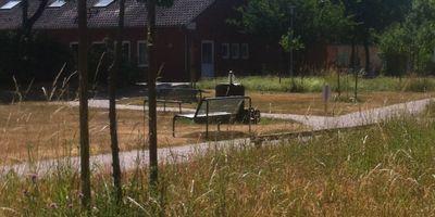 Diakonische Behindertenhilfe gGmbH Werkstattladen Zwieblick in Lilienthal