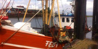 Butjadinger Fischereigenossenschaft eG in Fedderwardersiel Gemeinde Butjadingen