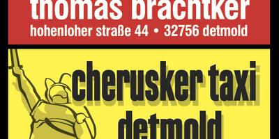 Cherusker Taxi Detmold in Detmold
