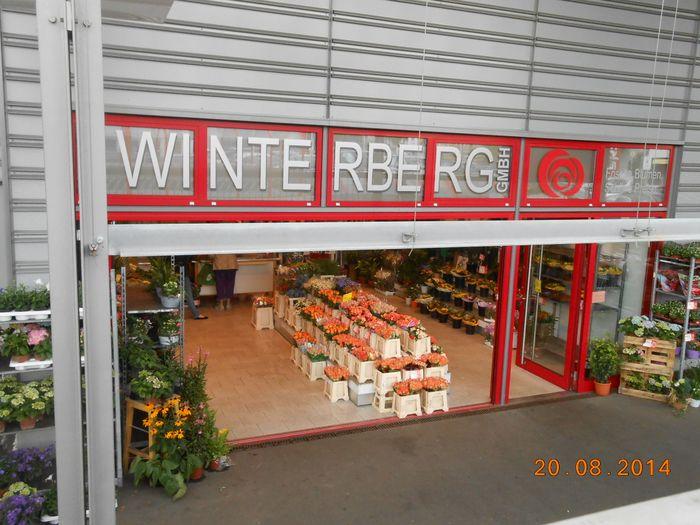 Blumen Winterberg GmbH - 1 Bewertung - Wuppertal Elberfeld