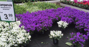 Heim Garten Bewertungen In Sprockhövel Golocal