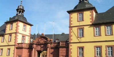 Naturwissenschaftliches Museum Schönborner Hof in Aschaffenburg