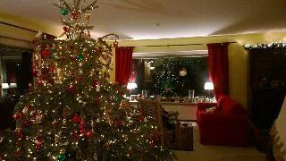Weihnachtsbaumverkauf wellingsb ttel beim ristorante la casetta 5 fotos hamburg - Weihnachtsbaumverkauf hamburg ...
