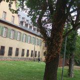 Das Neue Höchster Schloss in Frankfurt am Main