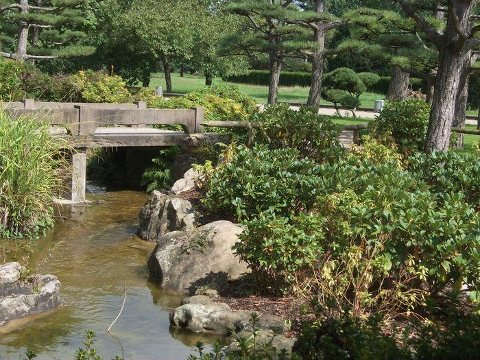 Japanischer Garten Im Nordpark 3 Bewertungen Düsseldorf Stockum