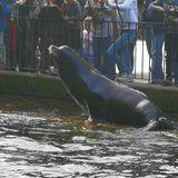 Zoo Krefeld in Krefeld