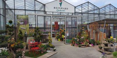 Blumen Reinhard in Heidelberg