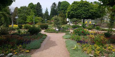 Stiftung Botanischer Garten Solingen e.V. in Solingen
