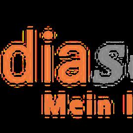 media-service consulting & solutions GmbH in Altwarmbüchen Gemeinde Isernhagen