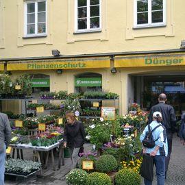 Samen-Schmitz GmbH Gartencenter in München