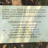 Birnbaum von Ribbeck - Fontanes Wandererbirnbaum in Ribbeck Stadt Nauen