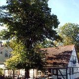 Fontanehaus Gaststätte u. Pension in Stechlin
