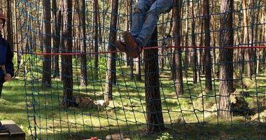 CLIMB UP! - Kletterwald in Klaistow in Klaistow Stadt Beelitz in der Mark