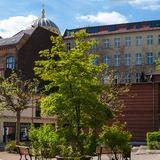 Profilbild von PLACCES GmbH in den Heckmann-Höfen