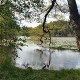 Kutschenkarsten - Karsten Fechtner in Rheinsberg in der Mark