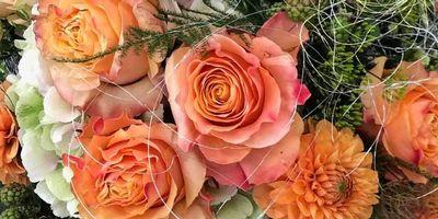 Blumen Bartels Inh. Arntken Ankica in Bad Zwischenahn