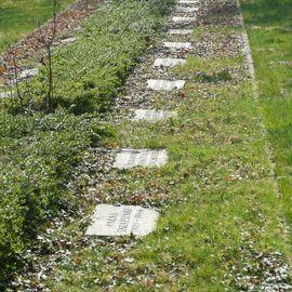 Bild zu Friedhof Trompet in Duisburg