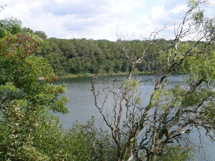 Waldsee Baerler Busch - 2 Bewertungen - Moers Eick - Orsoyer Allee ...
