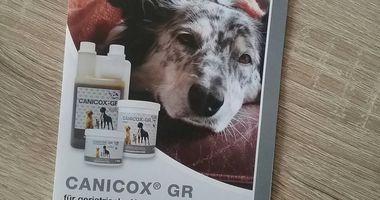 Tierarztpraxis Cordula von Linden in Wendeburg