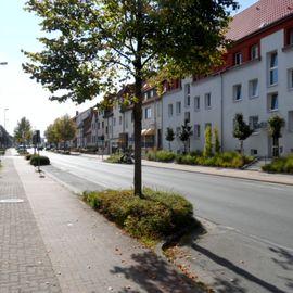 Ali's Grill-Imbiß in Bad Salzdetfurth